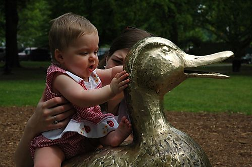 Hope looks at duck