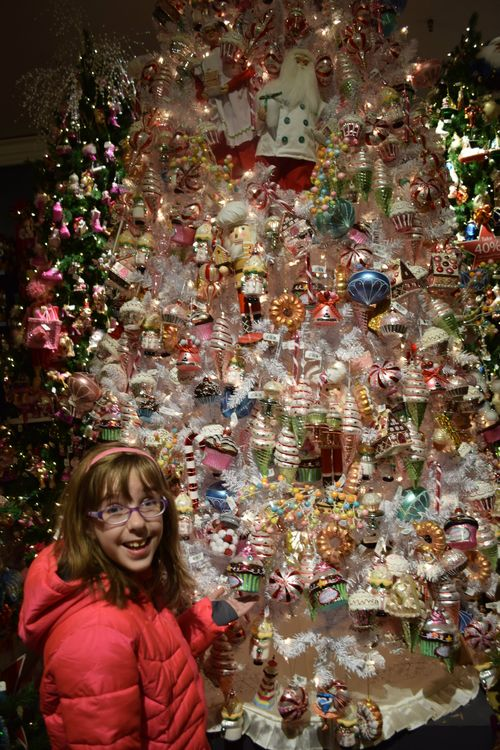 Hope with Macys Christmas Tree