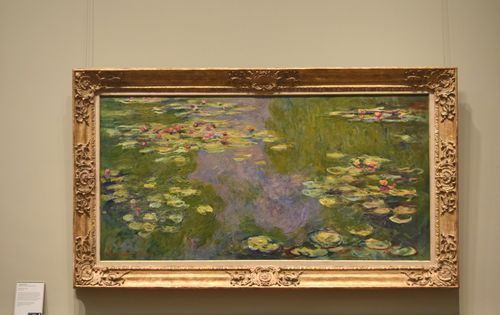 Monets Waterlillies