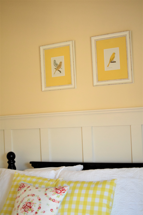 Yellow Guest Room Board and Batten Vintage Bird Prints