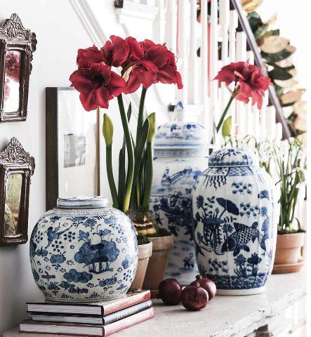 Splendid Sass Blue and White