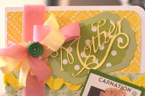 Mother Card 1